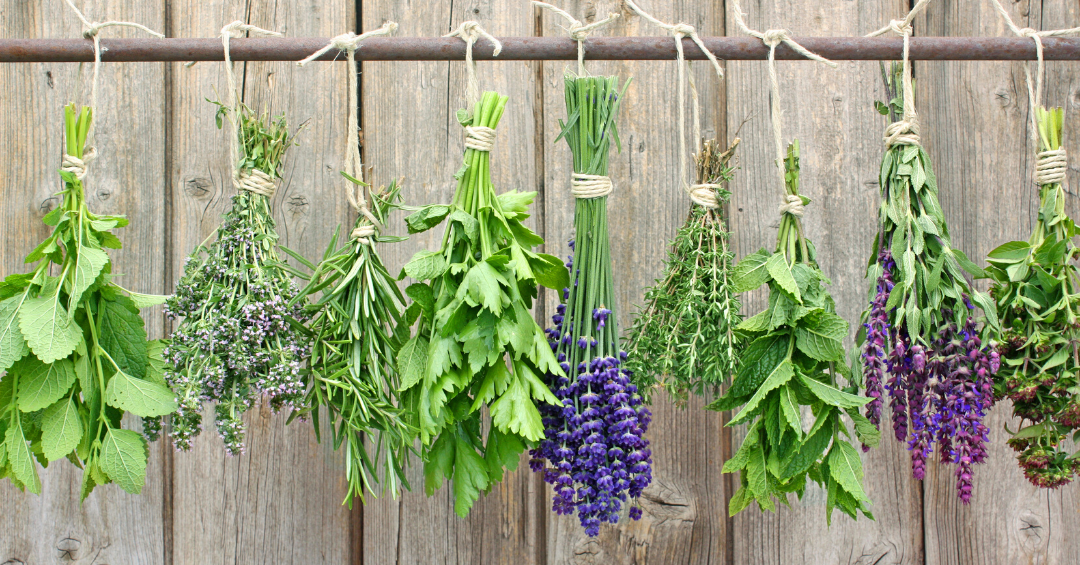 The Benefits of Cooking with herbs & spices
