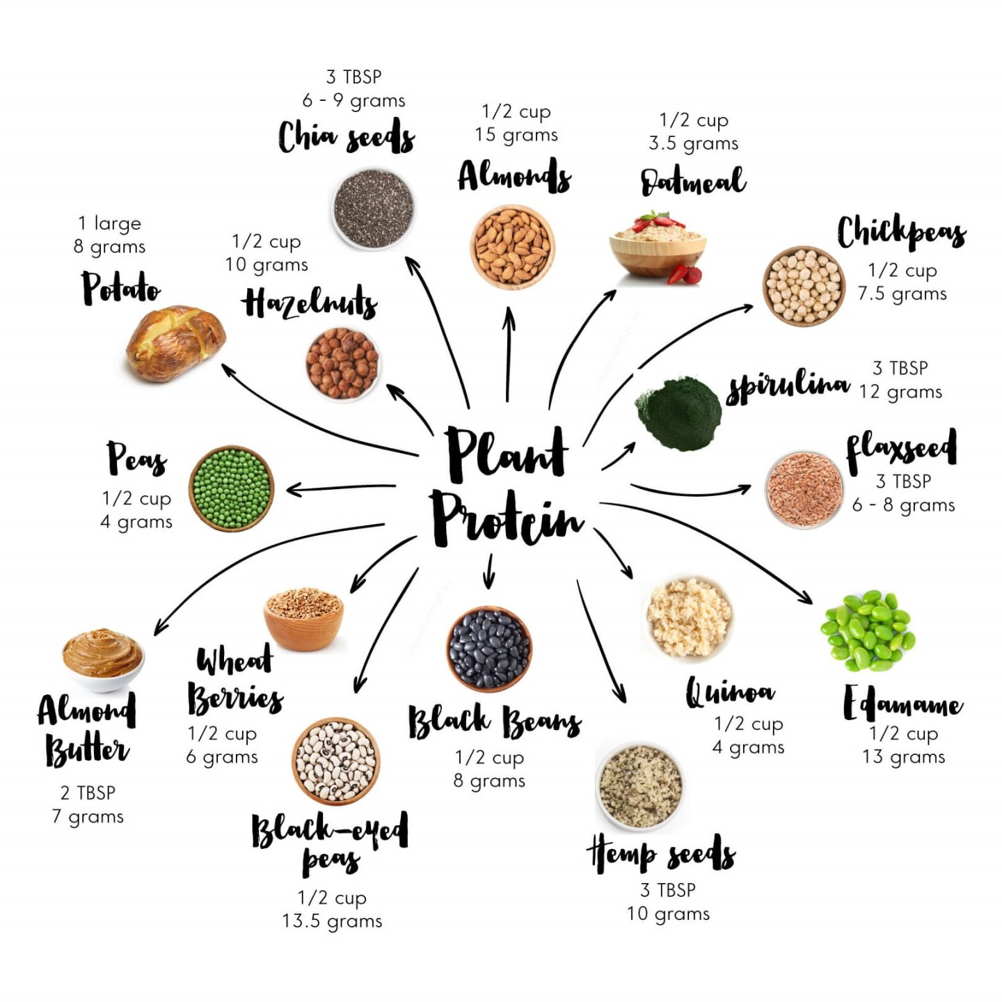 vegan / plant-based proteins